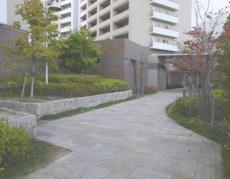 entrance-road.jpg
